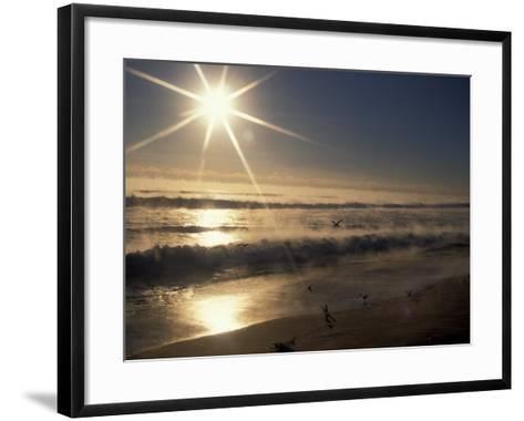 Ocean on Winter Morning, Florida, USA-Nik Wheeler-Framed Art Print