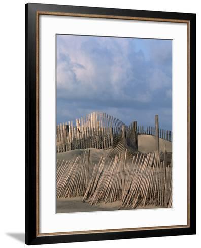 Weathered Fencing, Tybee Island, Georgia, USA-Joanne Wells-Framed Art Print