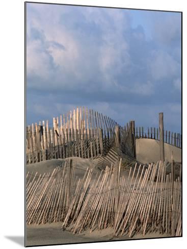 Weathered Fencing, Tybee Island, Georgia, USA-Joanne Wells-Mounted Photographic Print