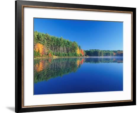 White Pines and Hardwoods, Meadow Lake, New Hampshire, USA-Jerry & Marcy Monkman-Framed Art Print