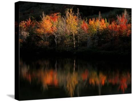 Fall Foliage with Reflections, New Hampshire, USA-Joanne Wells-Stretched Canvas Print