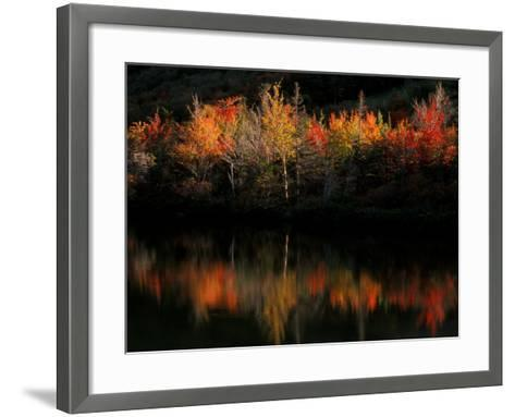 Fall Foliage with Reflections, New Hampshire, USA-Joanne Wells-Framed Art Print
