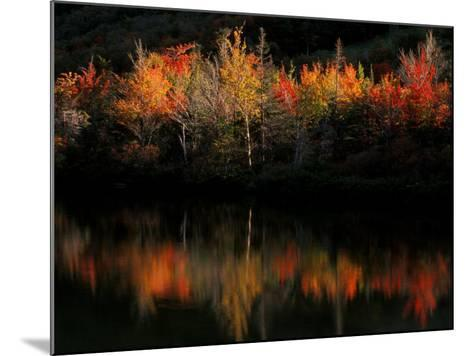 Fall Foliage with Reflections, New Hampshire, USA-Joanne Wells-Mounted Photographic Print