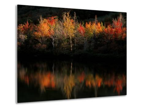 Fall Foliage with Reflections, New Hampshire, USA-Joanne Wells-Metal Print