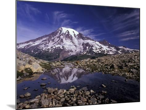 Reflection in Stream of Grinnel Glacier, Mt. Rainier National Park, Washington, USA-Jamie & Judy Wild-Mounted Photographic Print