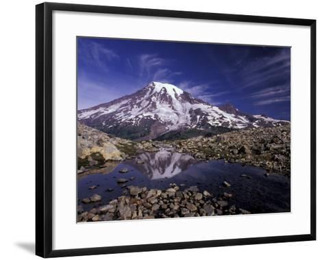 Reflection in Stream of Grinnel Glacier, Mt. Rainier National Park, Washington, USA-Jamie & Judy Wild-Framed Art Print