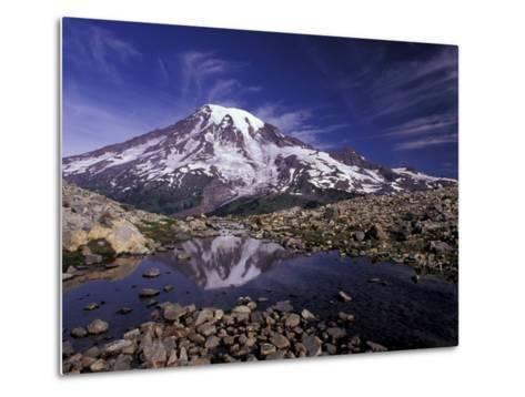 Reflection in Stream of Grinnel Glacier, Mt. Rainier National Park, Washington, USA-Jamie & Judy Wild-Metal Print