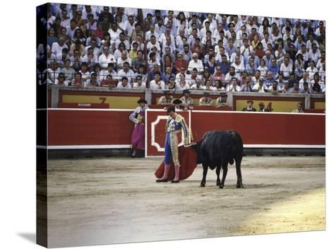 Bullfight, Pamplona, Spain--Stretched Canvas Print