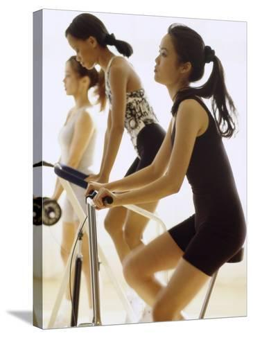 Women Working Out--Stretched Canvas Print