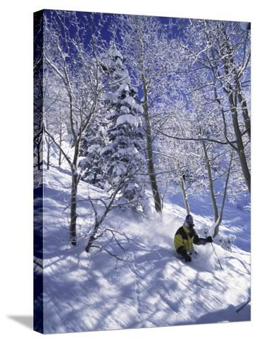 Side Profile of a Man Skiing--Stretched Canvas Print