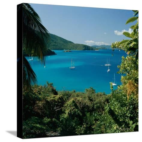 Virgin Islands National Park St. Johns Us Virgin Islands--Stretched Canvas Print