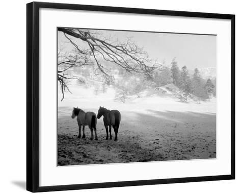 Winter Wonderland: Snow Scene in the Lake District, January 1946--Framed Art Print