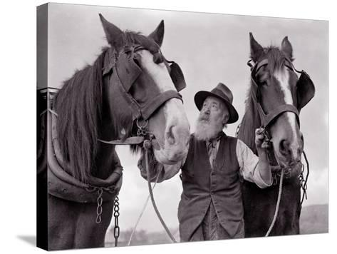 A Farmer with His Horses, 1962--Stretched Canvas Print