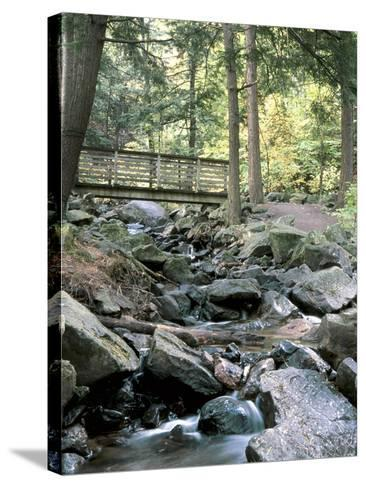 Bridge over Waterfall in a Forest--Stretched Canvas Print