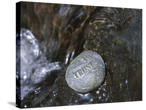 Rock with the Word Trust in Water--Stretched Canvas Print