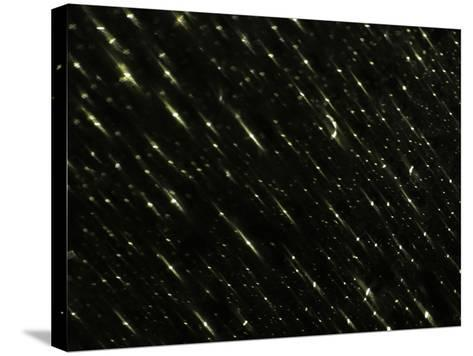 Time Exposure of Night Sky--Stretched Canvas Print