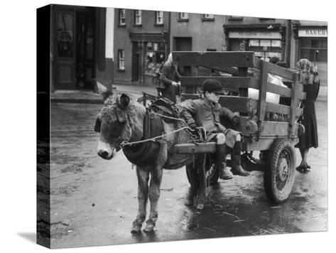 Small Boy Waits Patiently on a Donkey Cart in the Market Place at Kildare Co Kildare Ireland--Stretched Canvas Print
