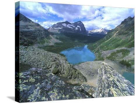 Lake O'Hara, Yoho National Park, British Columbia, Canada-Rob Tilley-Stretched Canvas Print