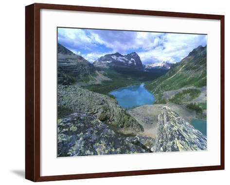 Lake O'Hara, Yoho National Park, British Columbia, Canada-Rob Tilley-Framed Art Print