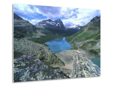 Lake O'Hara, Yoho National Park, British Columbia, Canada-Rob Tilley-Metal Print