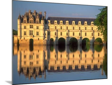 Chenonceau Chateau, Loire Valley, France-David Barnes-Mounted Photographic Print
