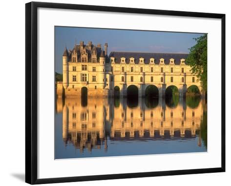 Chenonceau Chateau, Loire Valley, France-David Barnes-Framed Art Print