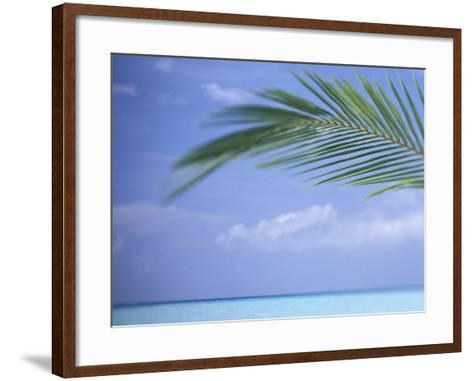Palm Frond Over Tropical Water-Michele Westmorland-Framed Art Print