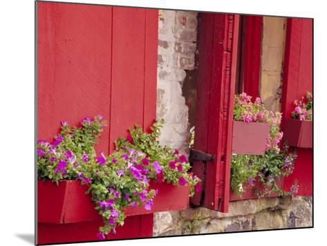 Flower Boxes on Storefronts, Savannah, Georgia, USA-Julie Eggers-Mounted Photographic Print