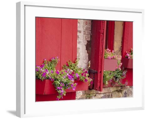 Flower Boxes on Storefronts, Savannah, Georgia, USA-Julie Eggers-Framed Art Print