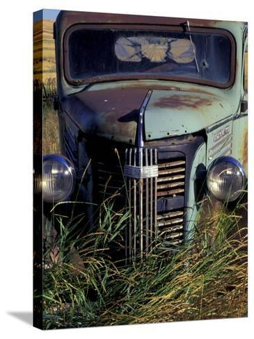 Old Truck in Field, Gennesse, Idaho, USA-Darrell Gulin-Stretched Canvas Print