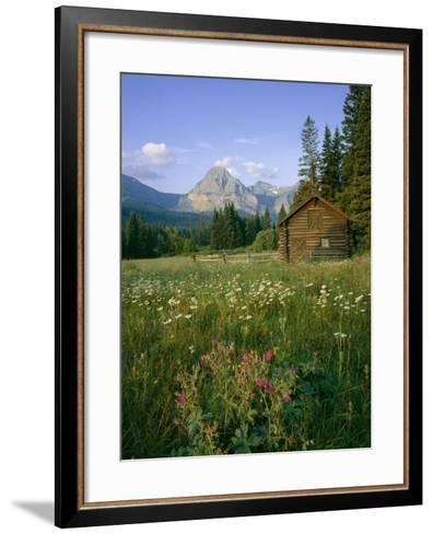 Old Park Service cabin in the Cut Bank Valley of Glacier National Park in Montana-Chuck Haney-Framed Art Print