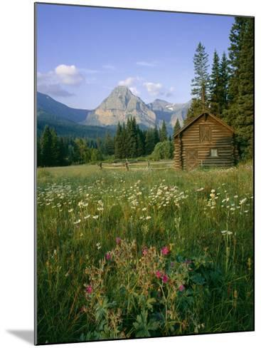 Old Park Service cabin in the Cut Bank Valley of Glacier National Park in Montana-Chuck Haney-Mounted Photographic Print