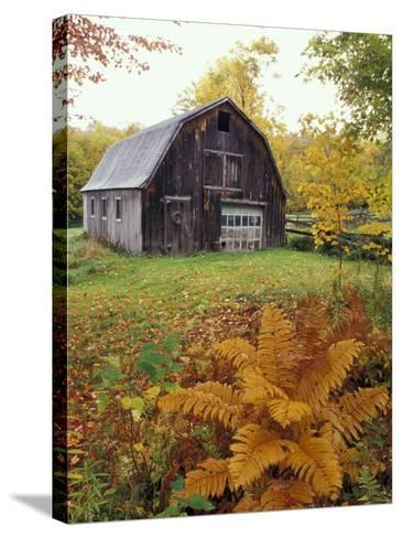 Barn and Fall Colors near Jericho Center, Vermont, USA-Darrell Gulin-Stretched Canvas Print