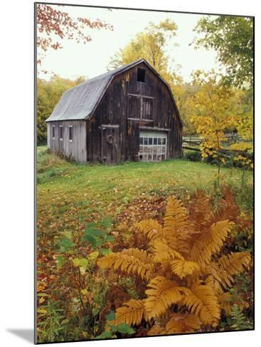 Barn and Fall Colors near Jericho Center, Vermont, USA-Darrell Gulin-Mounted Photographic Print