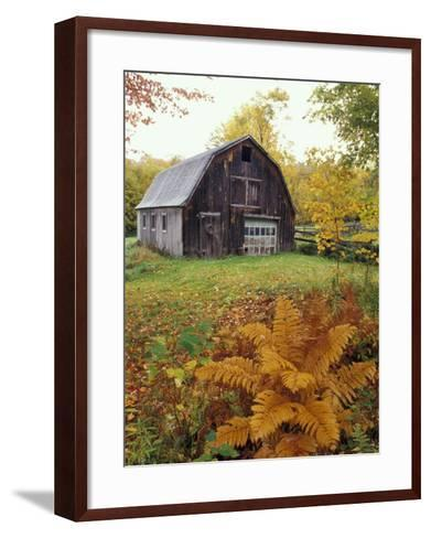 Barn and Fall Colors near Jericho Center, Vermont, USA-Darrell Gulin-Framed Art Print