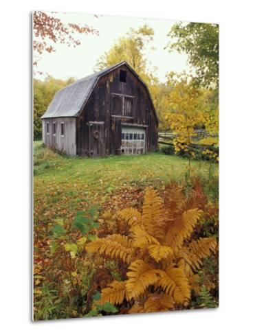 Barn and Fall Colors near Jericho Center, Vermont, USA-Darrell Gulin-Metal Print