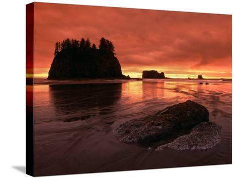 Sunset on Sea Stacks of Second Beach, Olympic National Park, Washington, USA-Jerry Ginsberg-Stretched Canvas Print