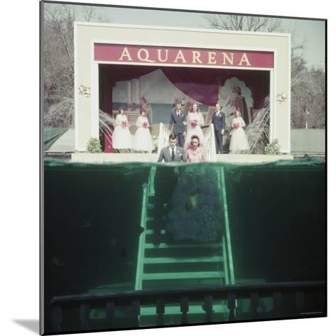 Couple Getting Married Underwater at Aquarena-John Dominis-Mounted Photographic Print