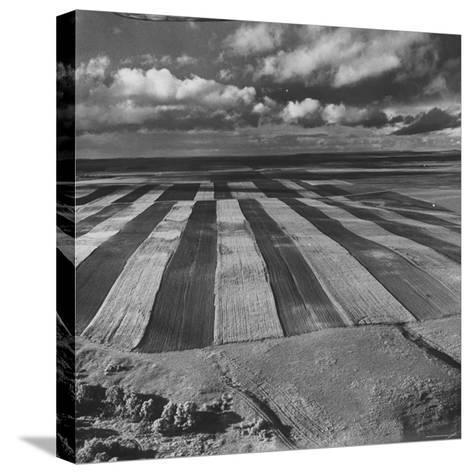 Aerial View of Farmland-Stan Wayman-Stretched Canvas Print
