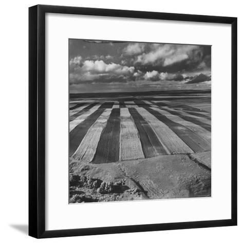 Aerial View of Farmland-Stan Wayman-Framed Art Print