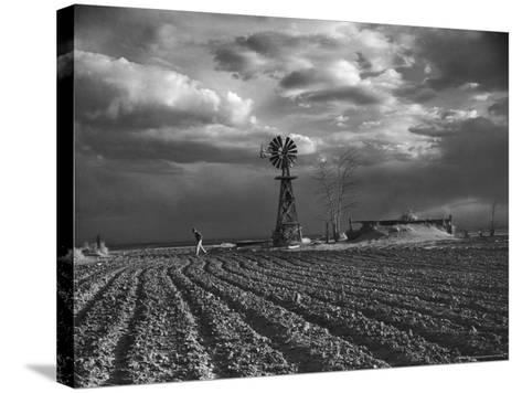 Dust Storm Rising over Farmer Walking Across His Plowed Field-Margaret Bourke-White-Stretched Canvas Print
