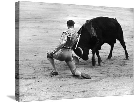 Matador Julian Marin and Bull in the Ring for a Bullfight During the Fiesta de San Ferman-Tony Linck-Stretched Canvas Print