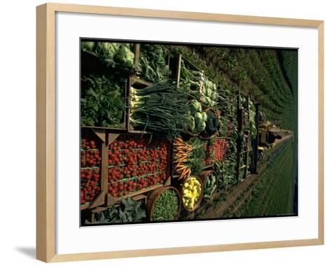 Farmer Hugh Tuttle Tractoring Fresh Produce from 50 Acre Farm Through Field to His Roadside Store-John Dominis-Framed Art Print