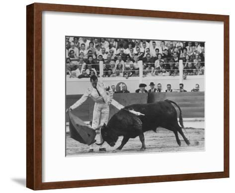 Matador Luis Miguel Dominguin During Bullfight-James Burke-Framed Art Print
