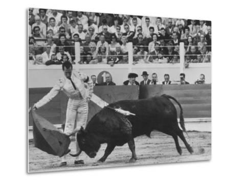 Matador Luis Miguel Dominguin During Bullfight-James Burke-Metal Print