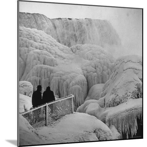 Frozen Niagara Falls, Trees, Park Grounds and Rocks Covered with Ice and Mist-Andreas Feininger-Mounted Photographic Print