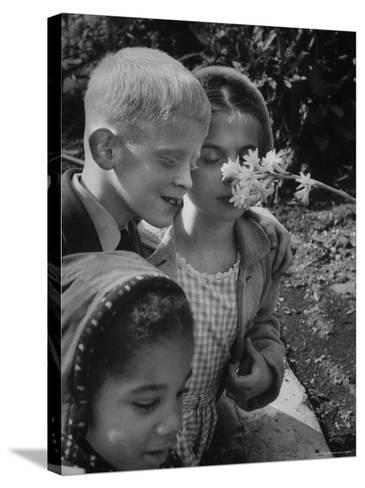Blind School Children During an Outing in Brooklyn Botanical Gardens of Fragrance-Lisa Larsen-Stretched Canvas Print