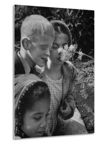 Blind School Children During an Outing in Brooklyn Botanical Gardens of Fragrance-Lisa Larsen-Metal Print