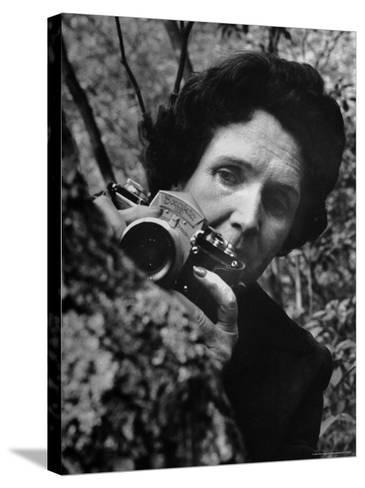 Biologist/Author Rachel Carson Holding Her German Kine Exakta Camera in the Woods Near Her Home-Alfred Eisenstaedt-Stretched Canvas Print