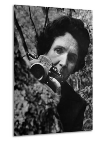 Biologist/Author Rachel Carson Holding Her German Kine Exakta Camera in the Woods Near Her Home-Alfred Eisenstaedt-Metal Print